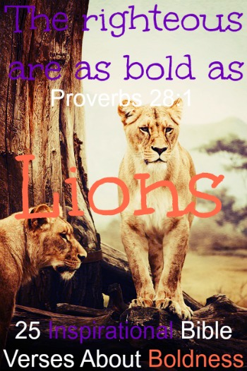 25 Inspirational Bible Verses About Boldness
