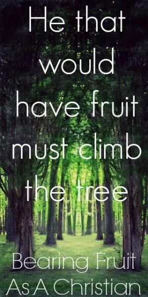 Bearing Fruit As A Christian