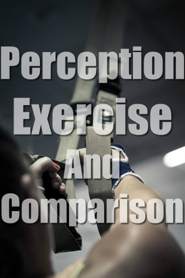 Perception, Exercise, and Comparison