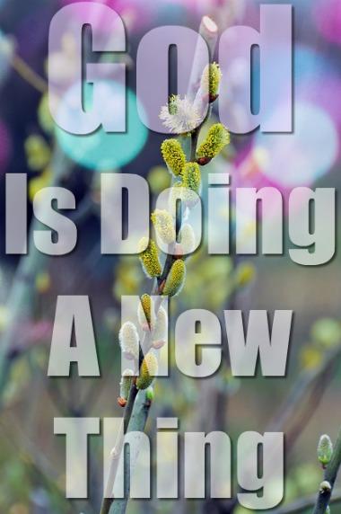 A New Season: A Fresh Start For Christians