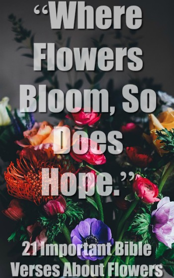 21 Important Bible Verses About Flowers