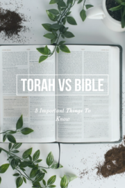 Torah Vs Bible Differences: (5 Important Things To Know)