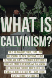 What Is Calvinism? 5 Points of Calvinism Explained (Beliefs)