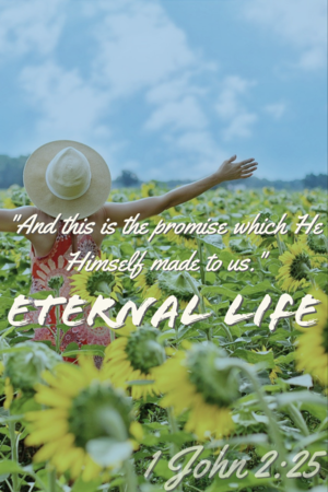 """1 John 2:25 """"And this is the promise which He made Himself to us. Eternal life."""""""