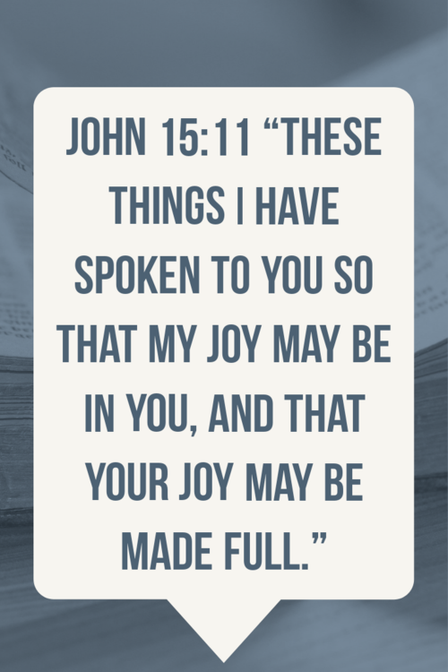 """""""My joy may be in you, and that your joy may be made full."""" John 15:11"""