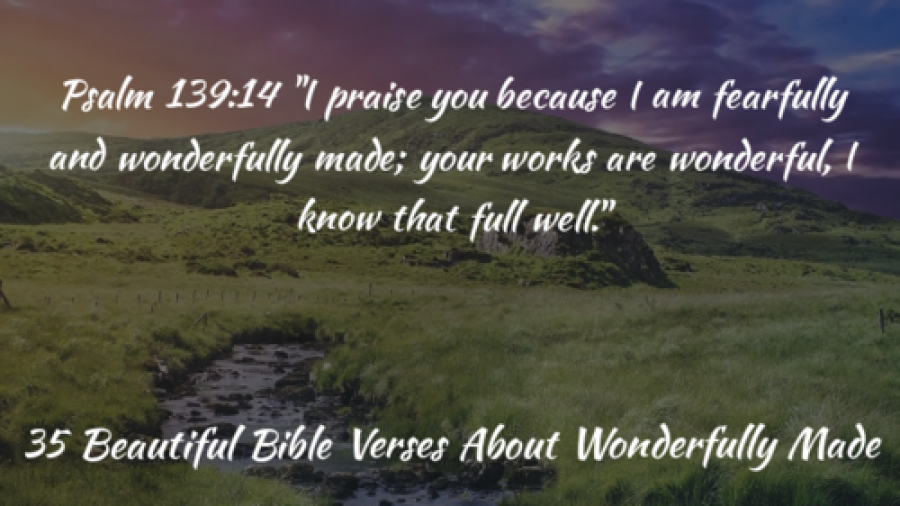 35 Beautiful Bible Verses About Wonderfully Made By God